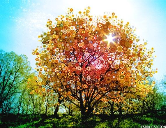 Splendid Sunburst - colorful kaleidoscope fantasy tree / fine art print
