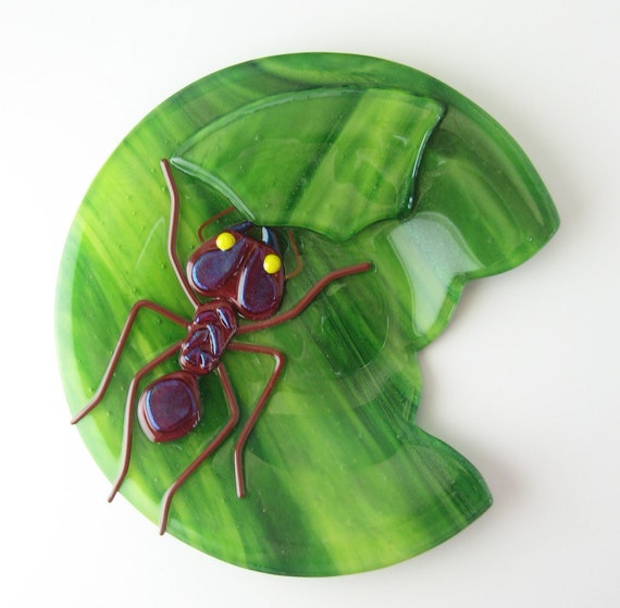 Leaf Cutter Ant Plate Made to Order