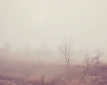 Foggy morning in the country-summer photography-fog photo- fog photography-morning(5 x 7 Original fine art photography prints) FREE Shipping