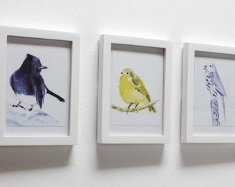 """Set of 3 Framed Bird Art prints from original watercolors 5"""" x 7"""" each"""