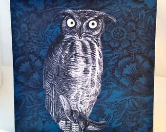The Owl on wood panel