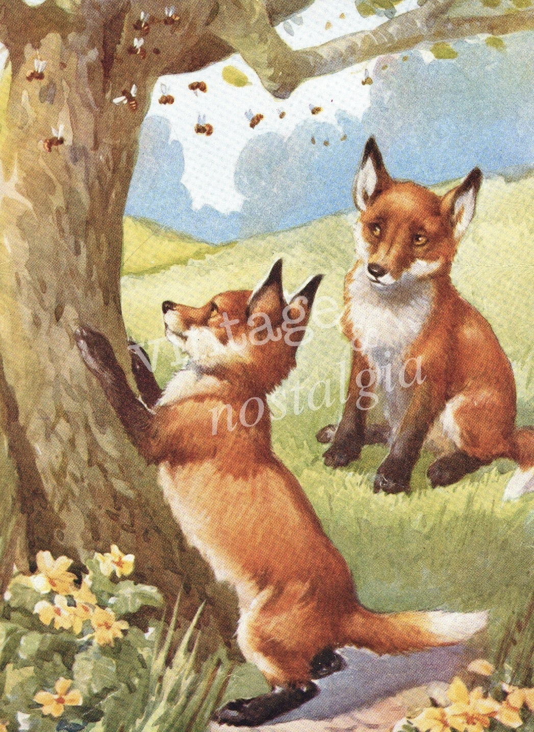 Vintage Baby Fox Vintage Illustration Fall By