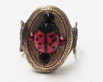 SALE, Ladybug Locket Ring