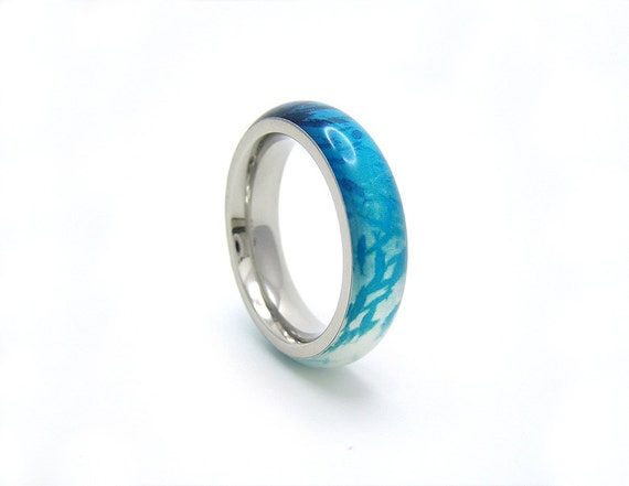 stainless steel and resin fish swarm ring