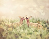 "Toy Deer Photography, Kissing Deer , Baby Nursery, Love Is In The Air, Home Decor, Fine Art, 8x8, 8x10 inches - ""Let's Meet In The Middle"""