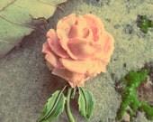 Vintage Celluloid Pink Rose Pin Brooch