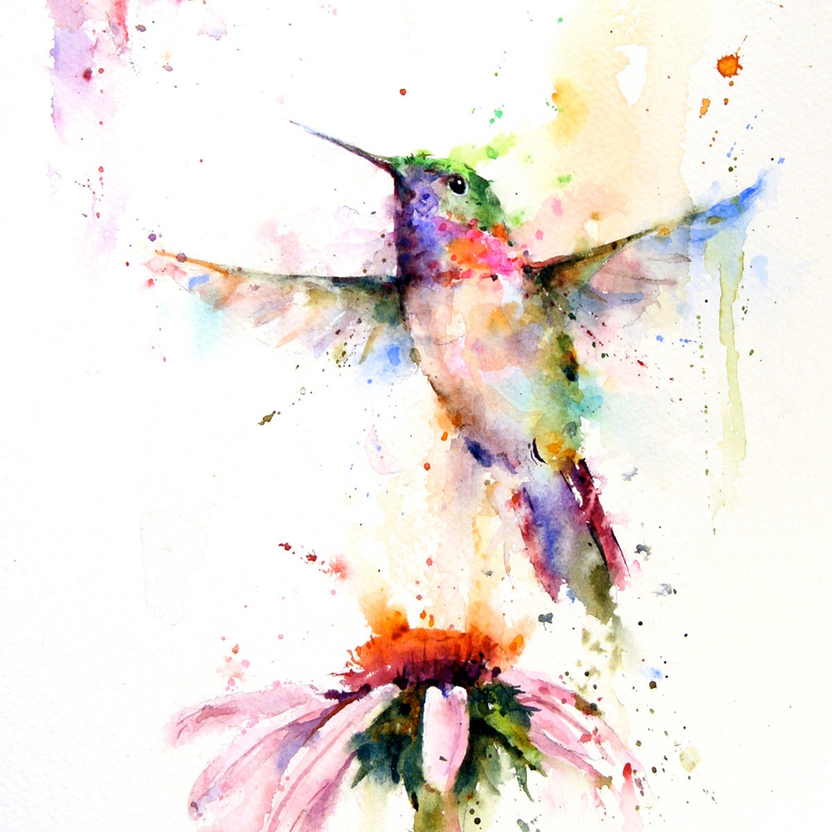 HUMMINGBIRD and Flower Watercolor Bird Art Print by Dean