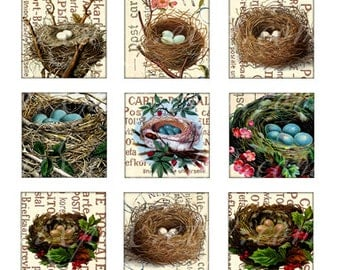 nests 1 x 1 inch square images Printable Download Digital Collage Sheet diy jewelry pendant sticker