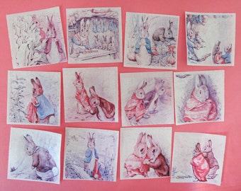 Peter Rabbit Edible Image Wafer Papers for your iced cookies, cupcakes, chocolates and cakes