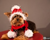 Santa Red Dog hat and Tube Scarf with Pom Pom
