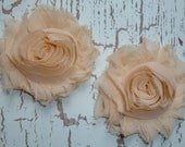 Chiffon Rosette Flowers - Shabby Vintage Style - Creamsicle - Set of Two