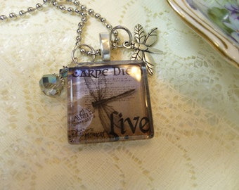 Dragonfly Carpe Diem Glass Tile Pendant with Dangles and Charm Necklace on Silver Plated Ball Chain