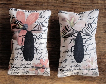 2 organic french lavender mini pillows, Natural History collection