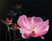 Oil Painting Print Pink Rose Landscape -Gift of the Rose Collection- Open Edition-Grace- 8x10