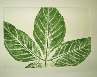 "Botanical print, tropical leaf portrait, hand-pulled original, direct relief print, 18"" x 24"" Ready to ship, gift for plant lover"