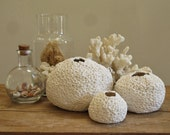 Porcelain Pod Trio (LARGE) - Series I