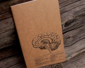 Brain Journal . altered moleskine . anatomy . brain sketch