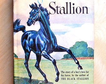 "Vintage Book - ""Son of the Black Stallion"""