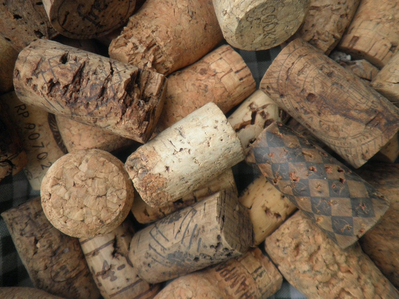 33 curiosidades sobre vinho que você (provavelmente) não sabia