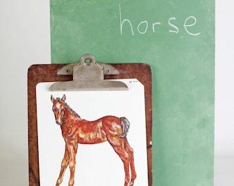 Large vintage language flash card, horse, 1980's