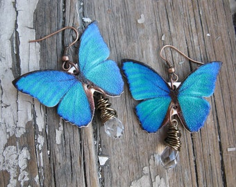 Blue Teal Butterfly Earrings with Clear Crystals Dangle Trend