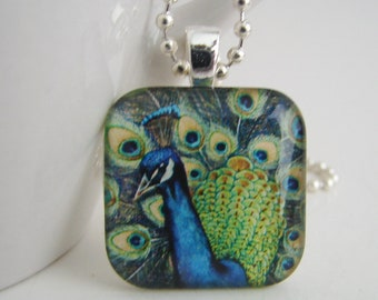 Top Bird Pendant with Free Necklace