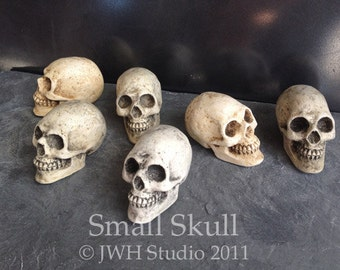 Small Skull by Jay W. Hungate