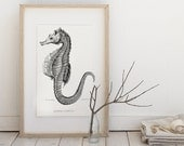 Seahorse, marine life, Horse  - Instant  Digital Image Download Sheet, Transfer To Pillows ,Burlap Bag, towels,  or Print on paper 008
