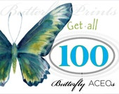 DISCOUNT BUNDLE Get all 100 ACEO Buttefly Fine Art Prints of Amy Kirkpatrick watercolors