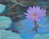 Waterlily Pond Original Chalk Pastel, Flower, 8 x 10 pink, blue