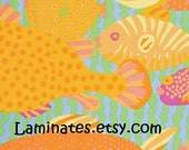 18 X 20 LAMINATED fabric - Gone Fishing pastel BPA free (aka oilcloth, vinyl, coated fabric) Mably