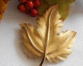 Fall Leaf Brooch Signed Trifari
