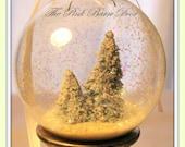 Two Snow Globe Christmas Ornaments