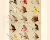 Fly Fishing for Trout - Cabin Decor - Fly Fishing Print - Orvis Fly Fishing - Gift for him - Cottage Chic - Flies for Trout Fishing