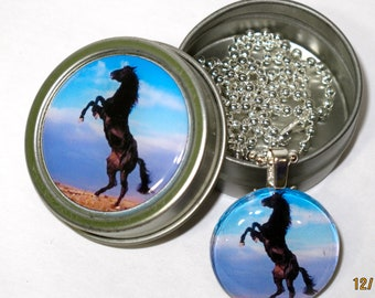 Black horse necklace with matching gift tin