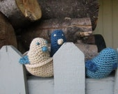 Crochet Birds and Nest Blue and Beige