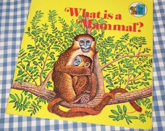 what is a mammal - a child's golden look-look book, vintage 1975 children's nonfiction book