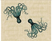 Teal octopus instant clip art Sea ocean creature Digital download for iron on fabric transfer burlap paper decoupage tote bag pillow No. 320