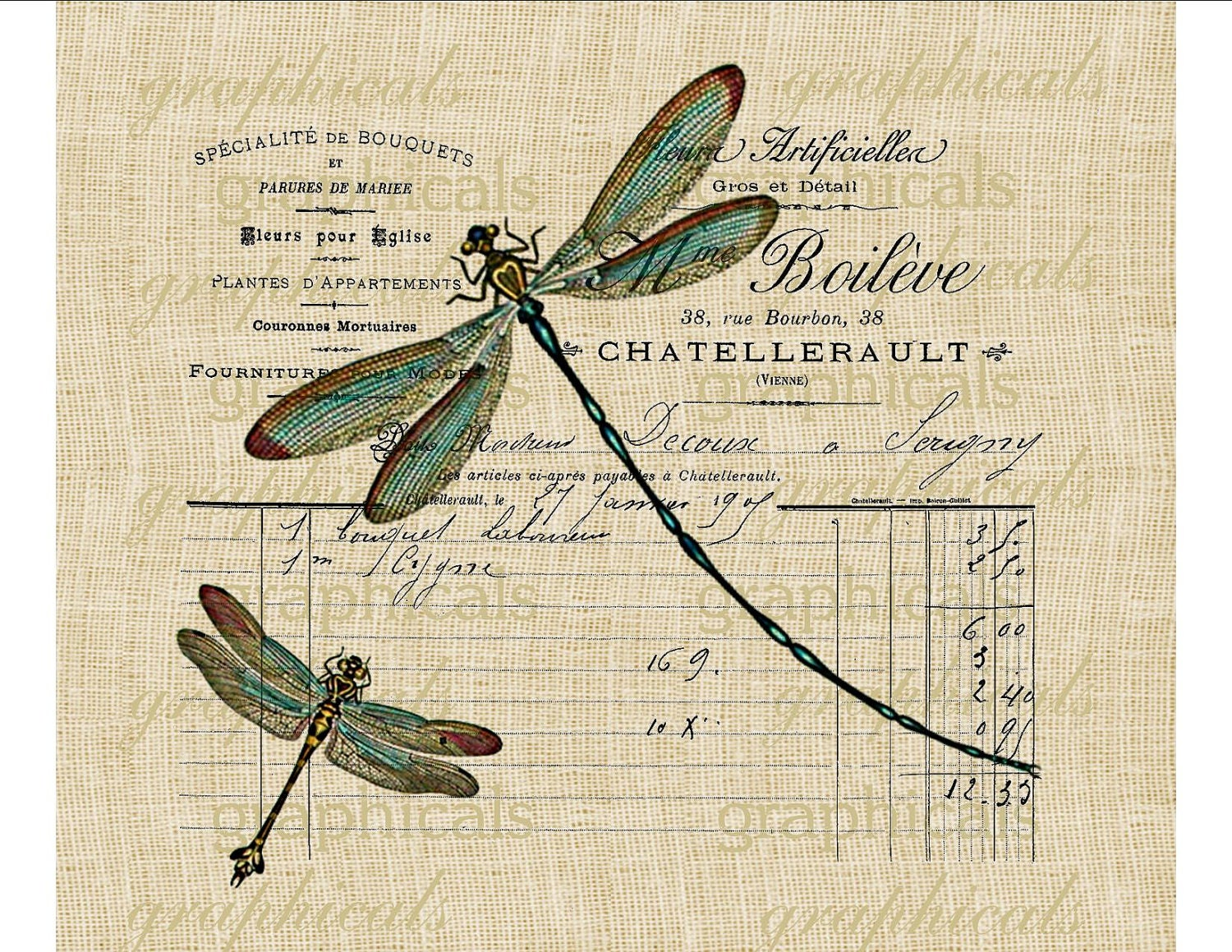 Teal dragonflies Paris French ephemera instant by graphicals