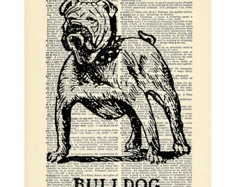 Bulldog dog pet Dictionary art vintage animal on Upcycled Vintage Dictionary Paper - 7.75x11