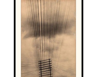 """Vintage Art photography """"Telegraph Wires"""" by Tina Modotti"""