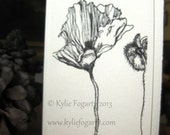 "CARD, Fine Art, ""Poppy Study 1"" Kylie Fogarty, Poppy Pods,  Black and White Drawing, Botannical, Garden Lover"