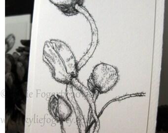 "Greeting Card, POPPY FLOWER CARD, Fine Art, ""Poppy Study 2"" Kylie Fogarty, Poppy Pods,  Black and White Drawing, Minimalist Card"