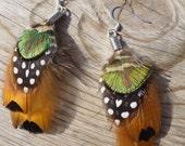 ELVA Feather Earrings