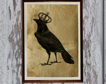 Crow art print Old paper Antiqued decoration vintage looking AK405-1