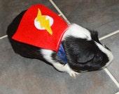 Guinea pig Flash costume cape - The Flash cavy cape costume