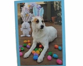 Easter Dog Card, Dog Photo Easter Card, Happy Easter Card
