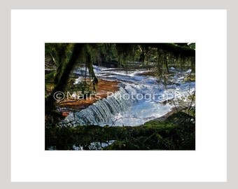 Waterfall Willamette Valley Oregon Trees Water Stream Nature, Original Photograph, Fine Art Photography signed matted 5x7 print