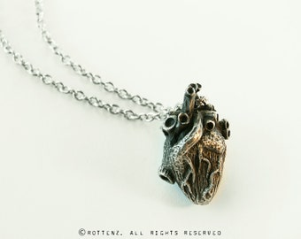 Heart Pendant (anatomically correct)