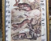 Rabbit Bunny Hare Vintage Rabbit Print Home Decor Cottage Chic Original Altered Art Collage Sheet Music Shabby White Home